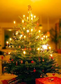 Tannenbaum Singen.Singen Unterm Tannenbaum Gut Für Körper Geist Und Seele