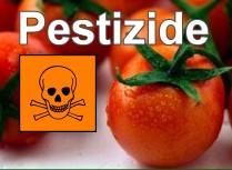 Aus für Pflanzenschutzmittel aus der Gruppe der Neonicotinoide