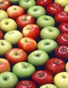 Äpfel: Knackig, lecker und gesund
