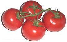 cherry_tomatoes_4