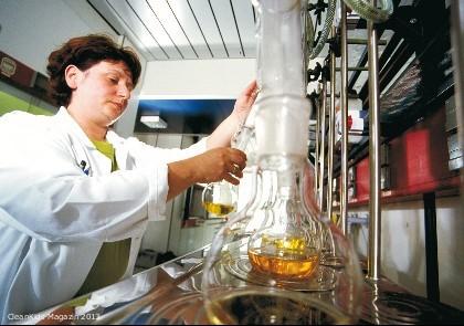 Laboruntersuchung - Bild: CVUA Stuttgart
