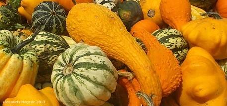 Farbenfroh und formenreich: Der vielseitige Kürbis für die Herbstküche