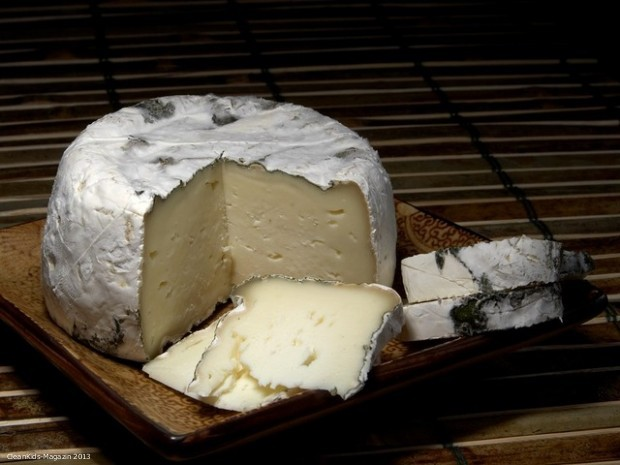 st-pat-cheese-3540_640