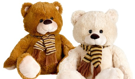 intertoys-recall-bears