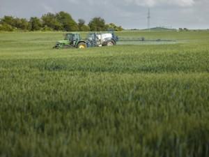 Der Eintrag der Chemikalien in die Gewässer erfolgt zu einem erheblichen Teil durch die Landwirtschaft. Pestizide stellen mit Abstand die stärkste Belastung für die Gewässer dar.  Foto: André Künzelmann, UFZ