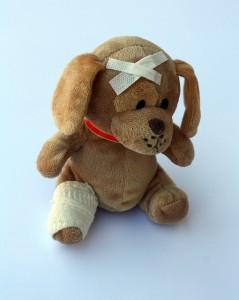 teddy-242838_640
