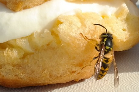 Notfall im Mund - Insektenstich in Mund und Rachen
