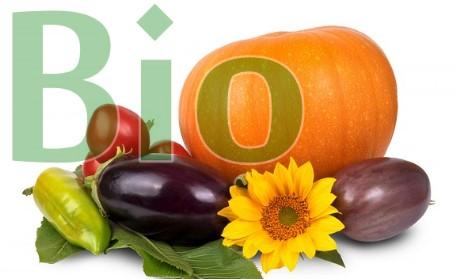 Trend zu Bio-Produkten bleibt ungebrochen