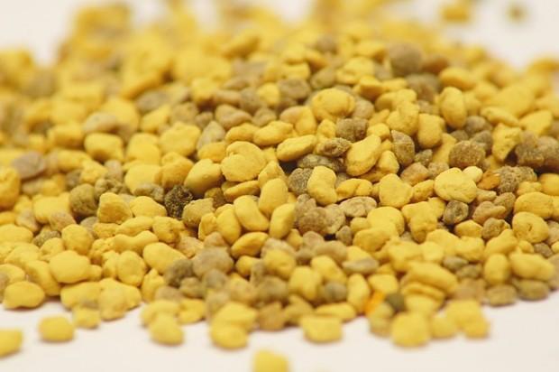 Bienenpollen -Für Menschen nutzlos
