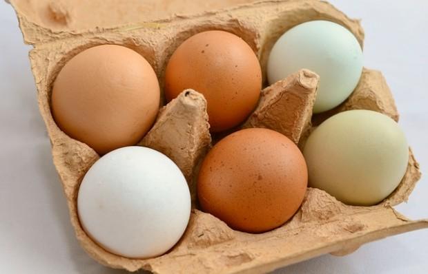 egg-653303_640