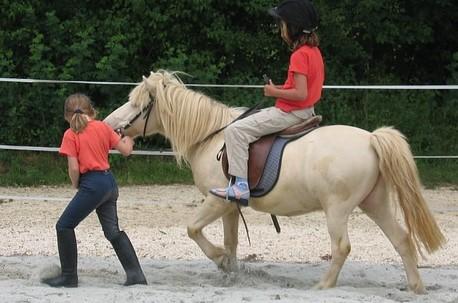 Kindersicherheitstag am 10. Juni 2015 - Kinderchirurgen fordern mehr Unfallschutz im Pferdesport