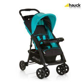 hauckcs-recall