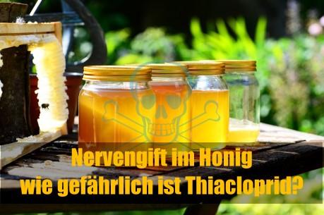 WDR Markt: Nervengift im Honig - wie gefährlich ist Thiacloprid?
