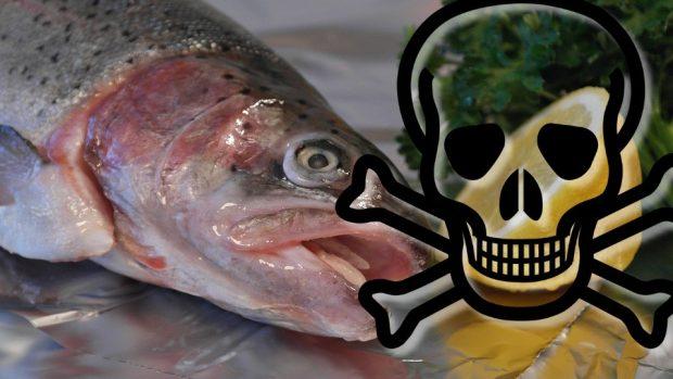 toxfish