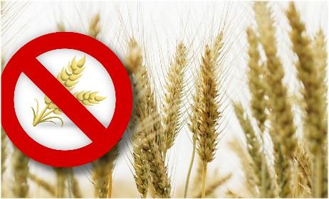 ÖKO-TEST glutenfreie Lebensmittel - Schadstoffe statt Klebereiweiß