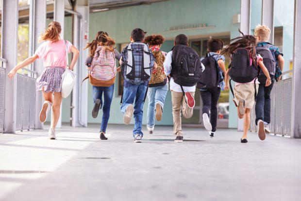 Schultaschen für Kinder gibt es in allen Größen, Formen und mit diversen Ausstattungen