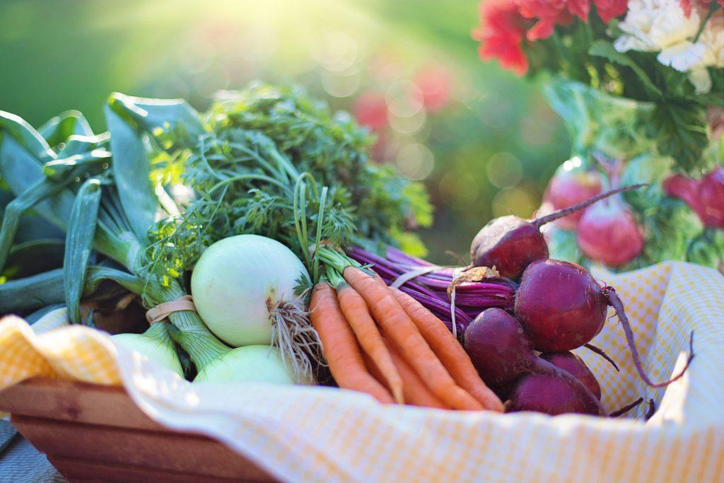 Ausgewogen essen: möglichst viele verschiedene Nährstoffe zuführen
