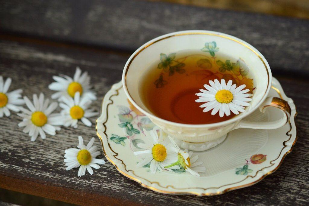 Bauchschmerzen in der Schwangerschaft – Welche Tees sind kann man trinken und welche sollte man vermeiden?